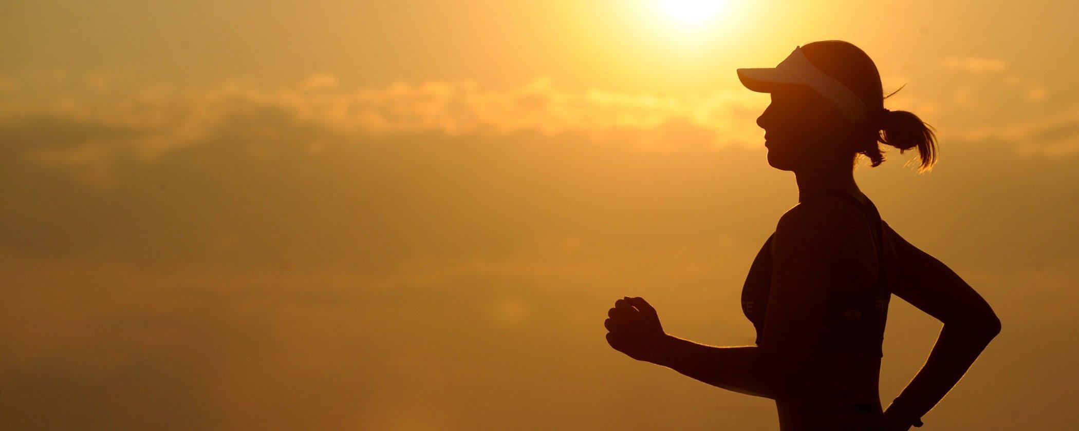 Google Coach: l'AI che programma esercizio fisico e dieta